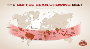 Coffee Belt