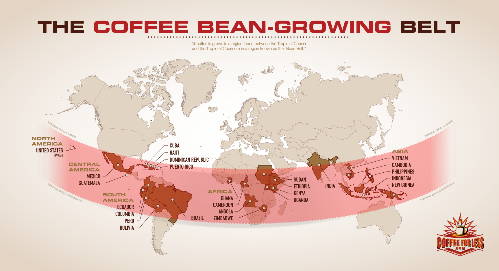 All about the bean latte love